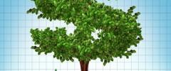 Social responsible Investing