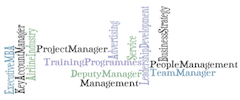 WorkExperience_TagCloud