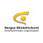 Norges-blindesamfund-logo-the-social-business-company